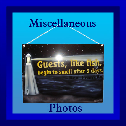 button for miscellaneous photos
